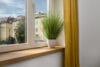 Traumhafte 3-Zimmer Wohnung im Herzen von Schwabing zum Erstbezug nach Renovierung - Ausblick